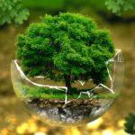 Zrównoważony rozwój w firmie Henkel Polska – Sustainability Confex 2019
