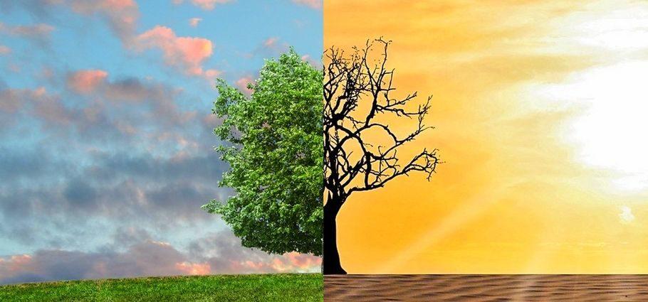 zmiany klimatu ocieplenie