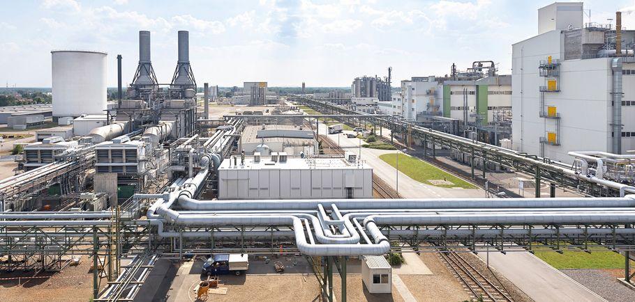 BASF Schwarzheide GmbH