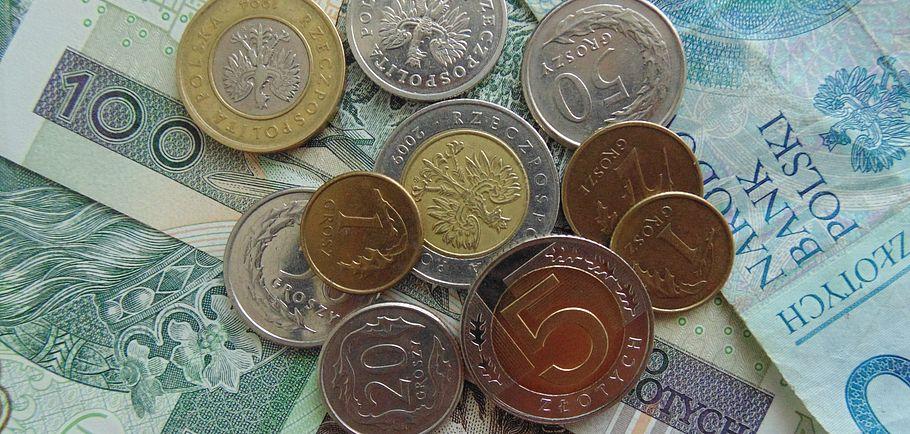 PLN pieniadze