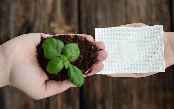 biofed absorber padeco