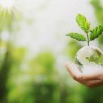Polska Chemia chce być bardziej zielona