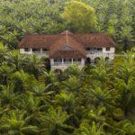 """BASF raportuje na temat """"zobowiązania palmowego"""""""