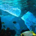 Henkel: apel w sprawie traktatu ONZ przeciwko plastikowym odpadom
