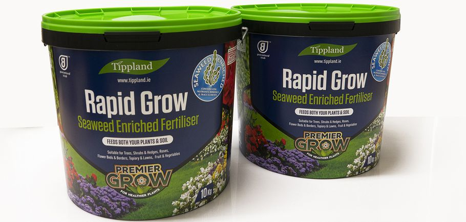 plast-box rapid grow