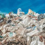 Wyeliminować patologie w sektorze odpadów